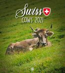 Swiss Cows Calendar 2021