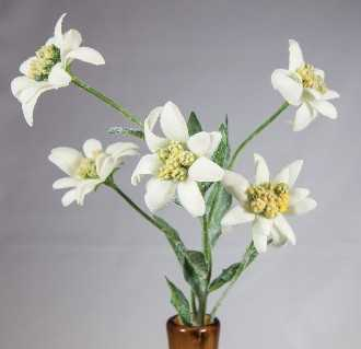Artificial Edelweiss Flowers