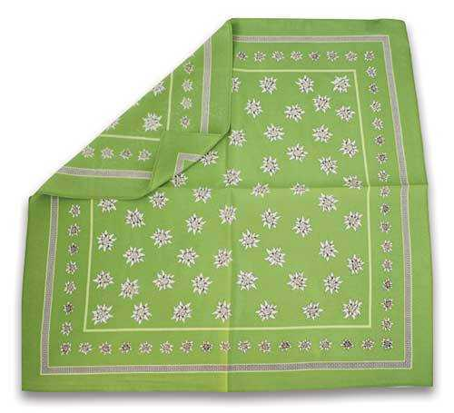 Silk Scarf with Edelweiss Design - Light Green